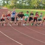 800m Abendlauf 2013 (Fotos: D. Schrader)